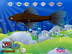Aquarium Fish Decor